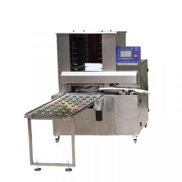 Double Color Cookie Biscuit Machine/Production Line